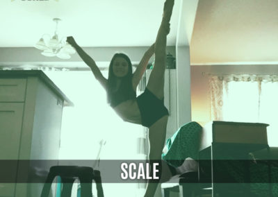 Flyer Position: Scale